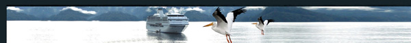 Alaskan Cruise ship, calm sea, sea birds