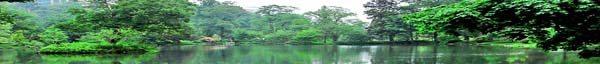 Tranquil lake in park setting