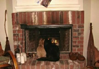 Jack and Annie by the fire.