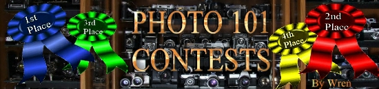 photo contests banner