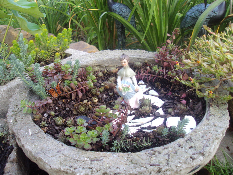 Cactus & Succulent Gardening cubit: C&S Container designs and ...