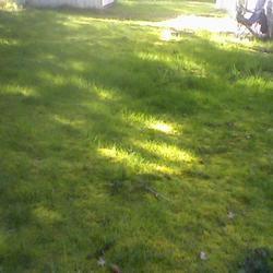 2010-04-08/1AnjL/54acf2