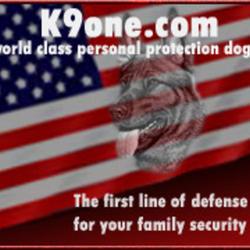 K9one.com