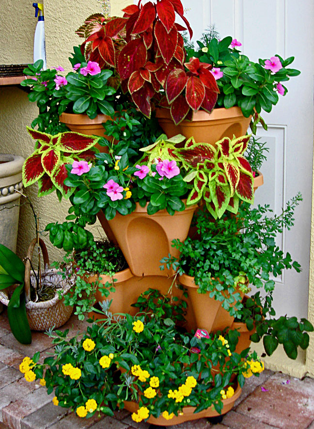 Container Gardening With Katg Cubit The Flexibility And Advantages
