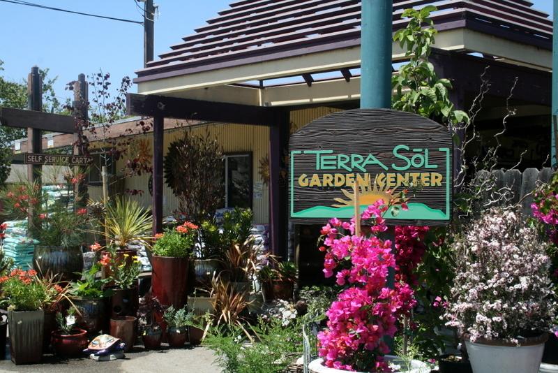 california living cubit california plant nurseries forum terra sol
