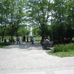 2010-05-16/adinamiti/5bf862