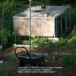 2010-06-11/Lance/477b04