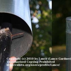 2010-06-15/Lance/81e7bd