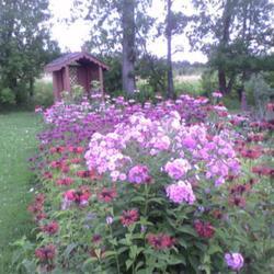 2010-09-04/nap/85634e