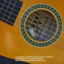 2010-11-08/Lance/e537ef