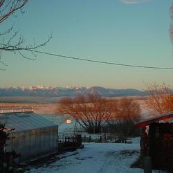 2010-12-03/Sharran/ed7aaf