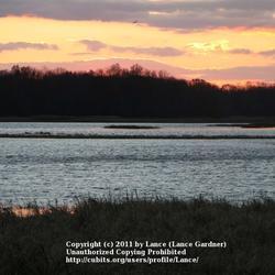 2011-10-11/Lance/14e303