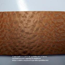 2011-11-19/goldfinch4/53e241