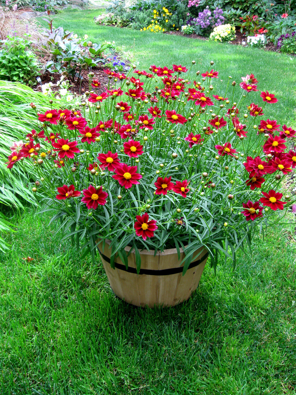 http://cubits.org/pics/2013-04-08/LarryR/417e67.jpg